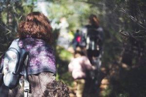 Andando en el bosque