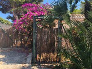Puerta/Entrada/Salida Grupo Llúcia